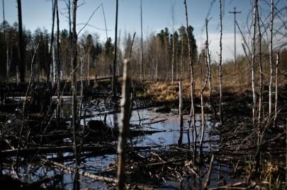 Rosneft Oil Spill, Russia